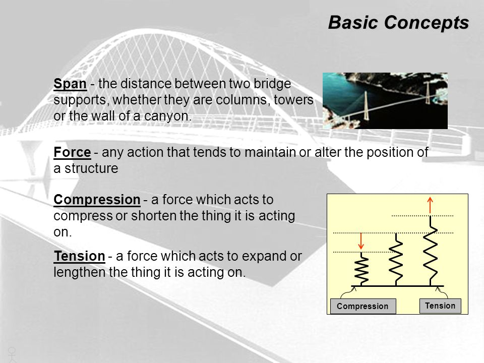 Basic Concepts Beam - a rigid, usually horizontal, structural element Pier - a vertical supporting structure, such as a pillar Cantilever - a projecting structure supported only at one end, like a shelf bracket or a diving board Beam Pier Load - weight distribution throughout a structure