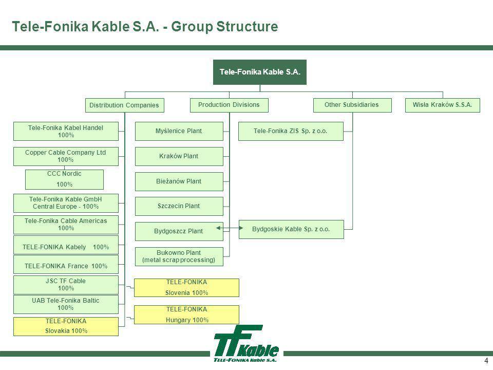 4 Tele-Fonika Kable S.A.- Group Structure Tele-Fonika Kable S.A.