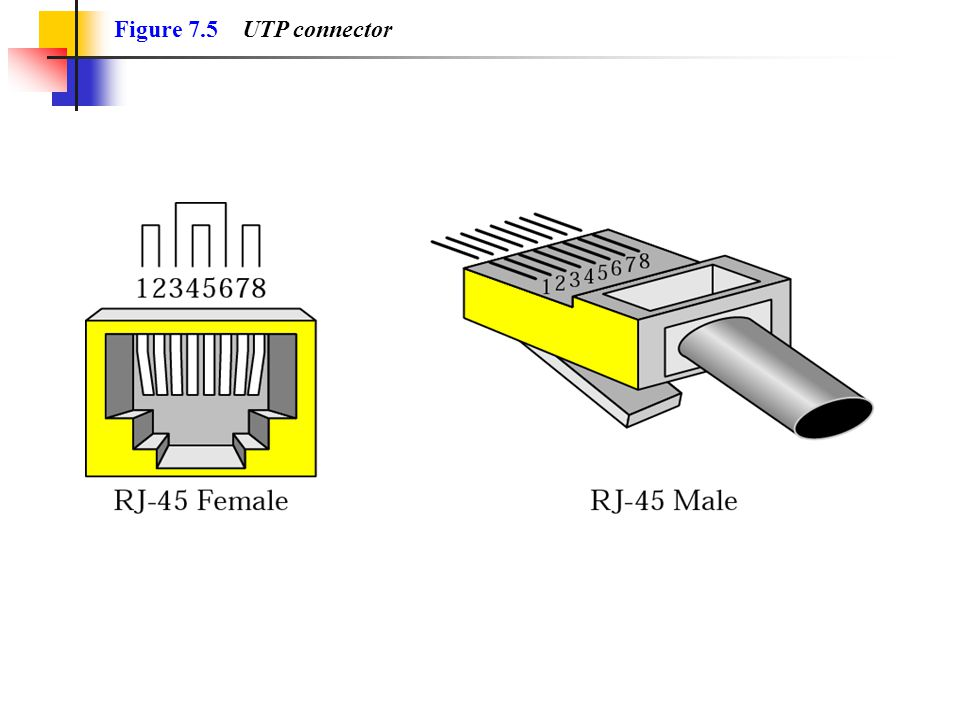 Figure 7.5 UTP connector