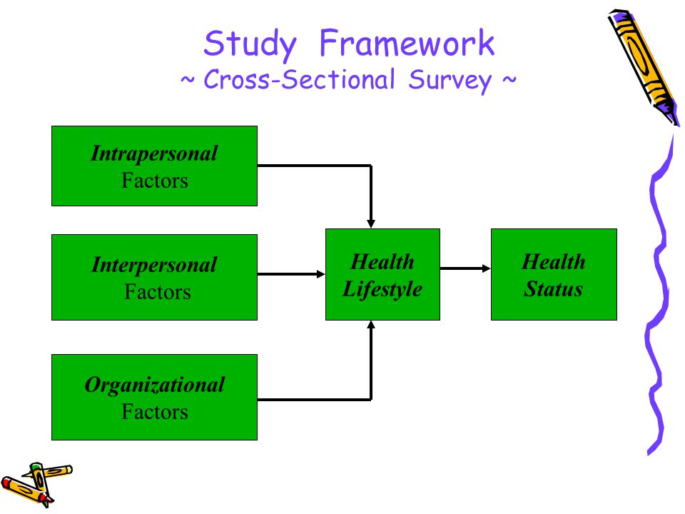 Study Framework ~ Cross-Sectional Survey ~ Intrapersonal Factors Interpersonal Factors Organizational Factors Health Lifestyle Health Status