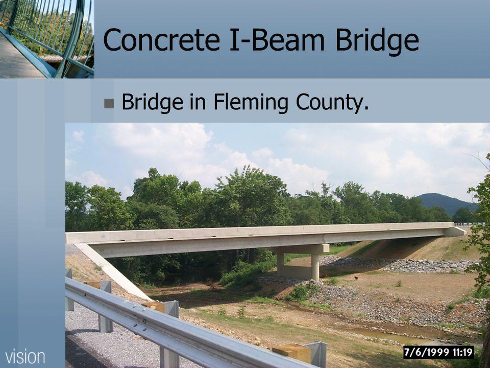 Concrete I-Beam Bridge Bridge in Fleming County.