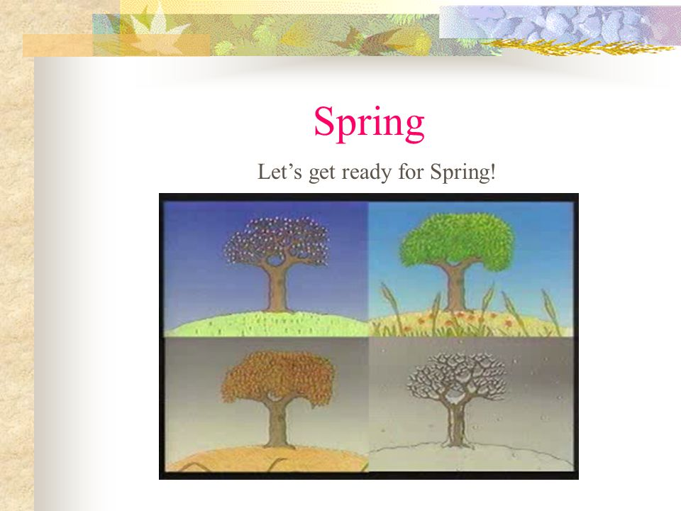 Spring Lets get ready for Spring!
