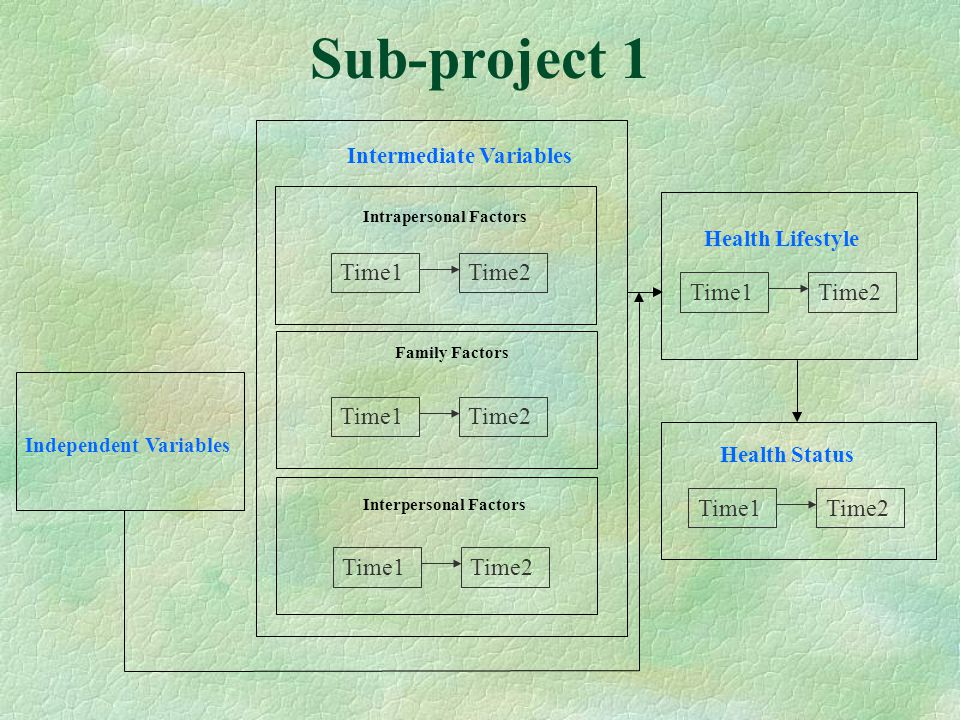 Sub-project 1 Health Lifestyle Time1Time2 Health Status Time1Time2 Time1Time2 Independent Variables Intermediate Variables Intrapersonal Factors Family Factors Interpersonal Factors Time1Time2 Time1Time2