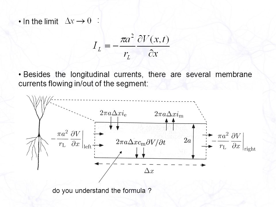 In the limit : Besides the longitudinal currents, there are several membrane currents flowing in/out of the segment: do you understand the formula