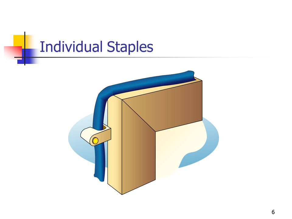 6 Individual Staples