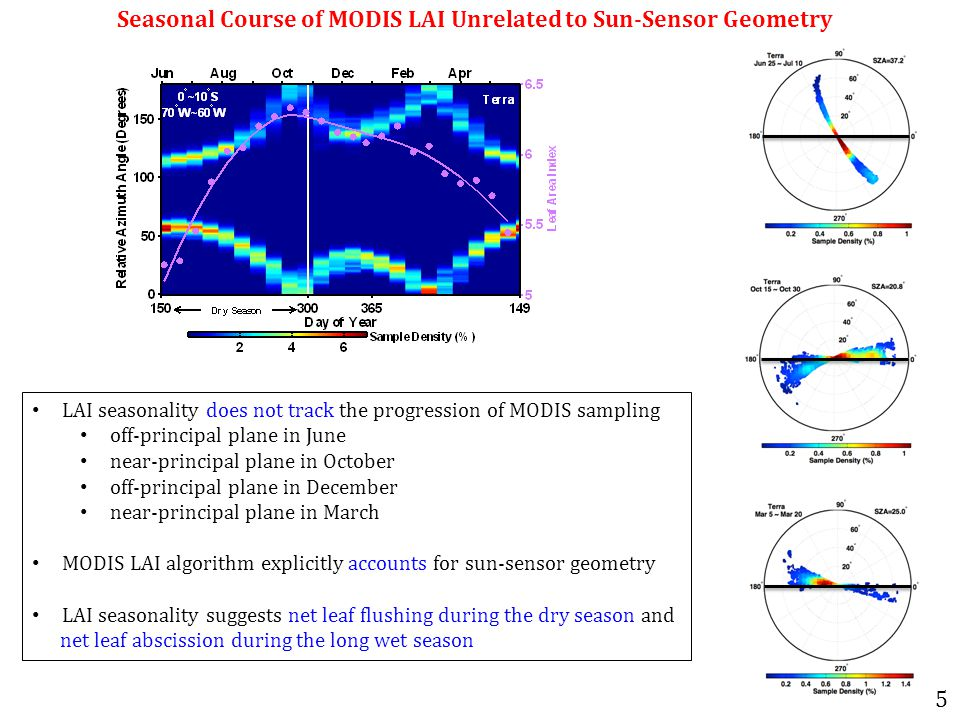Seasonal Course of MODIS LAI Unrelated to Sun-Sensor Geometry LAI seasonality does not track the progression of MODIS sampling off-principal plane in June near-principal plane in October off-principal plane in December near-principal plane in March MODIS LAI algorithm explicitly accounts for sun-sensor geometry LAI seasonality suggests net leaf flushing during the dry season and net leaf abscission during the long wet season 5