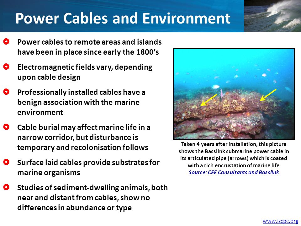 Power cables to remote areas and islands have been in place since early the 1800s Electromagnetic fields vary, depending upon cable design Professionally installed cables have a benign association with the marine environment Cable burial may affect marine life in a narrow corridor, but disturbance is temporary and recolonisation follows Surface laid cables provide substrates for marine organisms Studies of sediment-dwelling animals, both near and distant from cables, show no differences in abundance or type Taken 4 years after installation, this picture shows the Basslink submarine power cable in its articulated pipe (arrows) which is coated with a rich encrustation of marine life Source: CEE Consultants and Basslink Power Cables and Environment