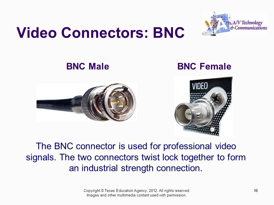 Video Connectors: BNC 16 BNC MaleBNC Female The BNC connector is used for professional video signals.