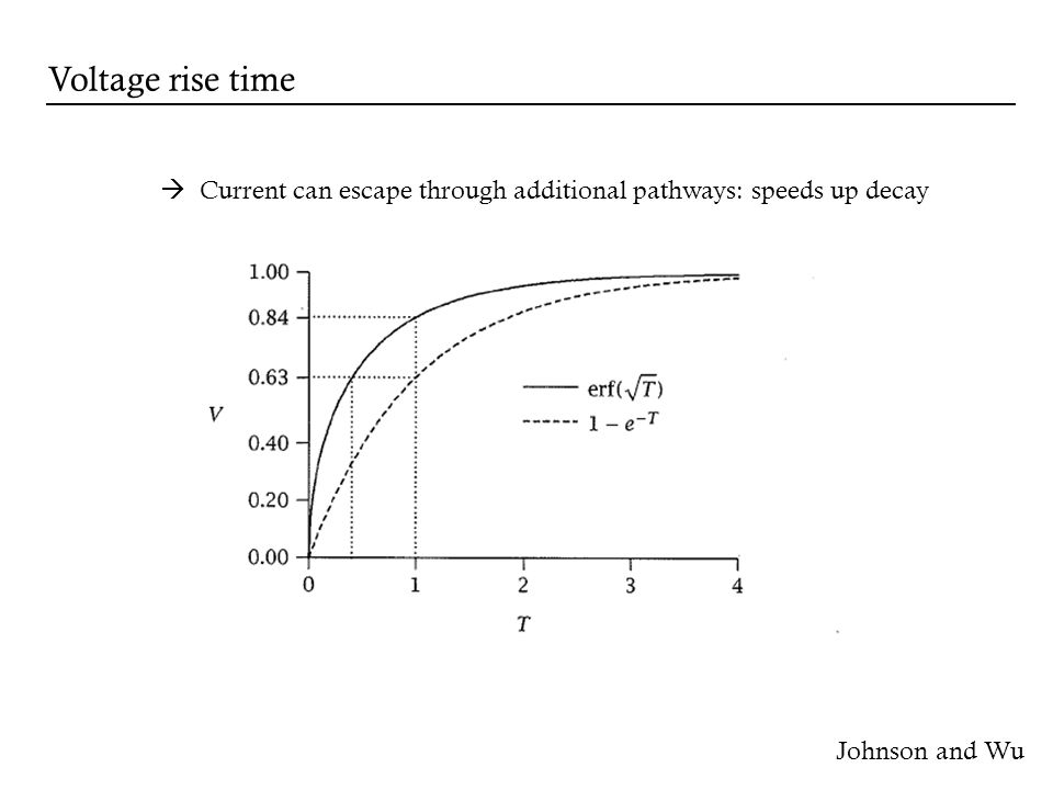 Johnson and Wu Voltage rise time Current can escape through additional pathways: speeds up decay