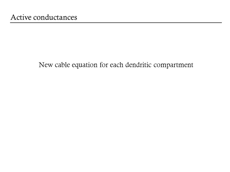 Active conductances New cable equation for each dendritic compartment