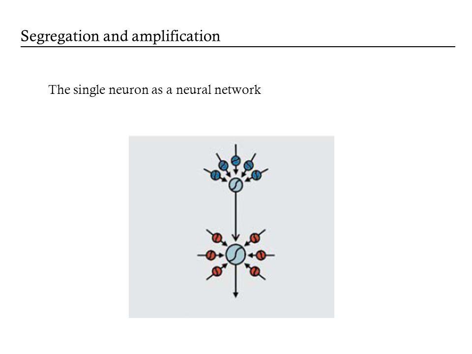 The single neuron as a neural network