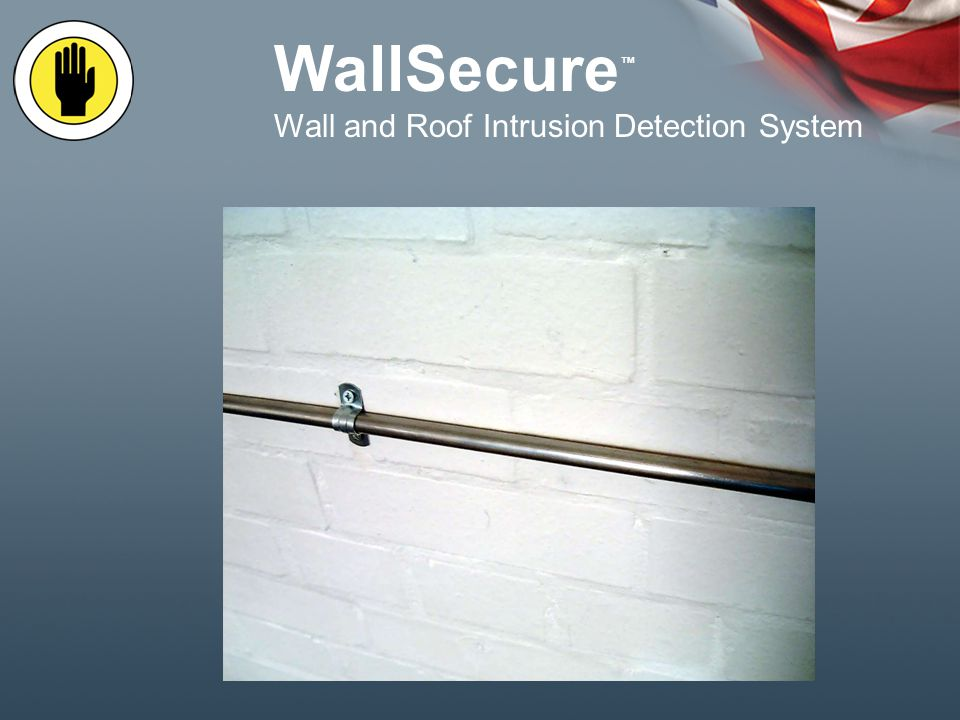 WallSecure Wall and Roof Intrusion Detection System