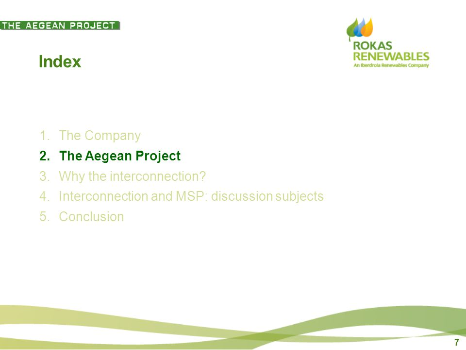 7 Index 1.The Company 2.The Aegean Project 3.Why the interconnection.
