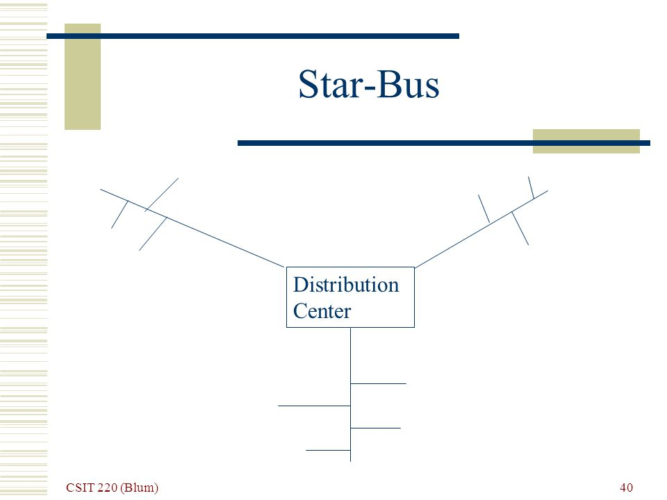 CSIT 220 (Blum) 40 Star-Bus Distribution Center