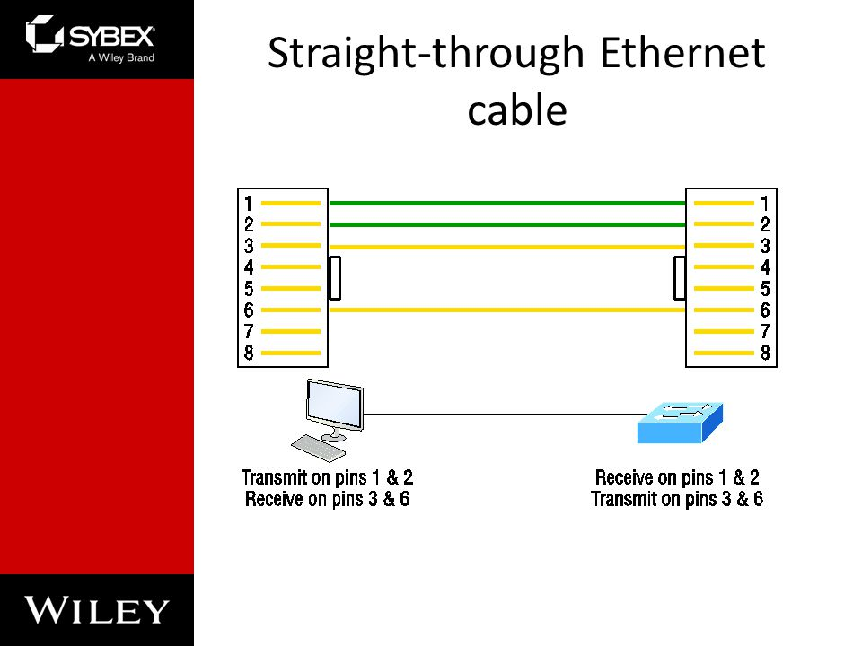 Straight-through Ethernet cable