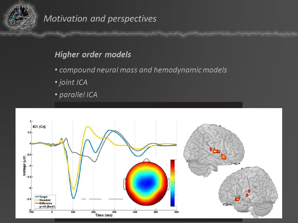 Higher order models compound neural mass and hemodynamic models joint ICA parallel ICA