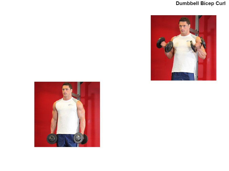 . Dumbbell Bicep Curl