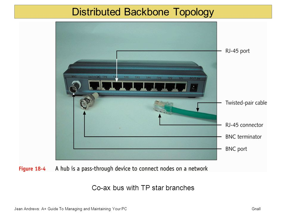GnallJean Andrews: A+ Guide To Managing and Maintaining Your PC Distributed Backbone Topology Co-ax bus with TP star branches