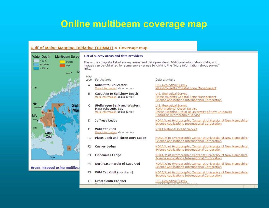 Online multibeam coverage map