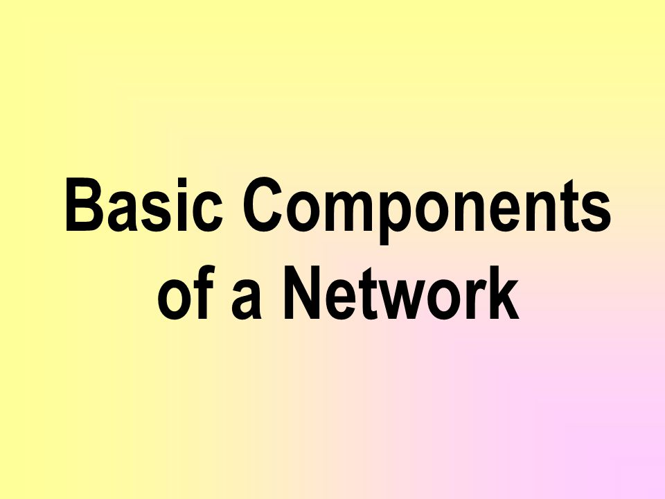 Basic Components of a Network