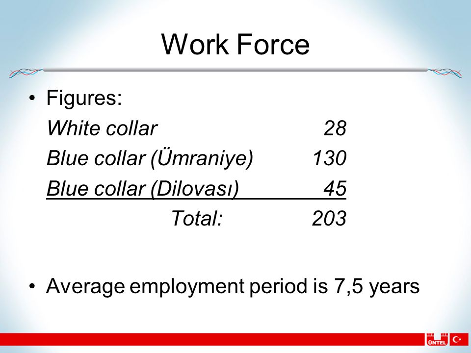 Work Force Figures: White collar 28 Blue collar (Ümraniye)130 Blue collar (Dilovası) 45 Total:203 Average employment period is 7,5 years