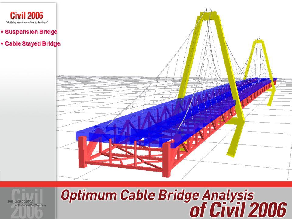 Suspension Bridge Cable Stayed Bridge