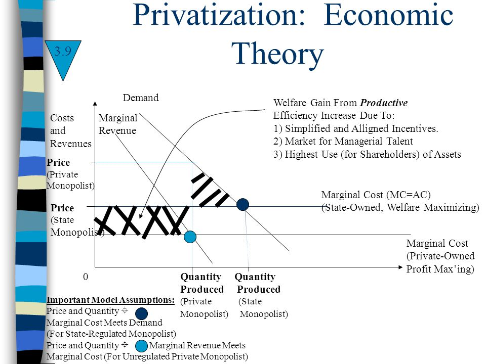 Privatization: Economic Theory Costs and Revenues 0 Demand Price (Private Monopolist) Marginal Cost (MC=AC) (State-Owned, Welfare Maximizing) Marginal