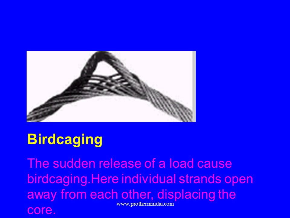 Birdcaging The sudden release of a load cause birdcaging.Here individual strands open away from each other, displacing the core. www.prothermindia.com