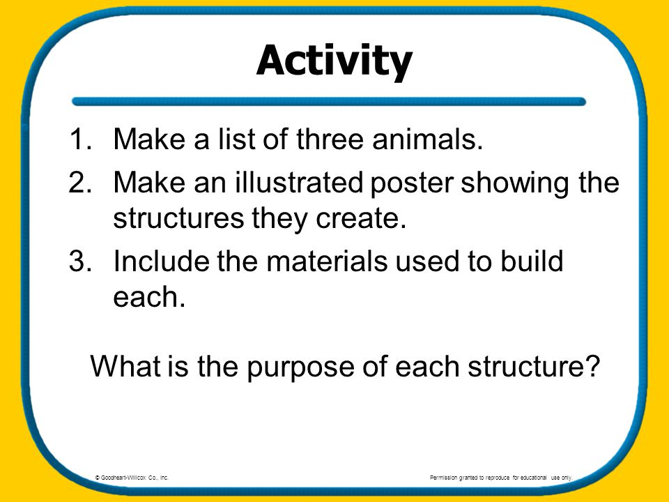 Activity 1.Make a list of three animals. 2.Make an illustrated poster showing the structures they create. 3.Include the materials used to build each.