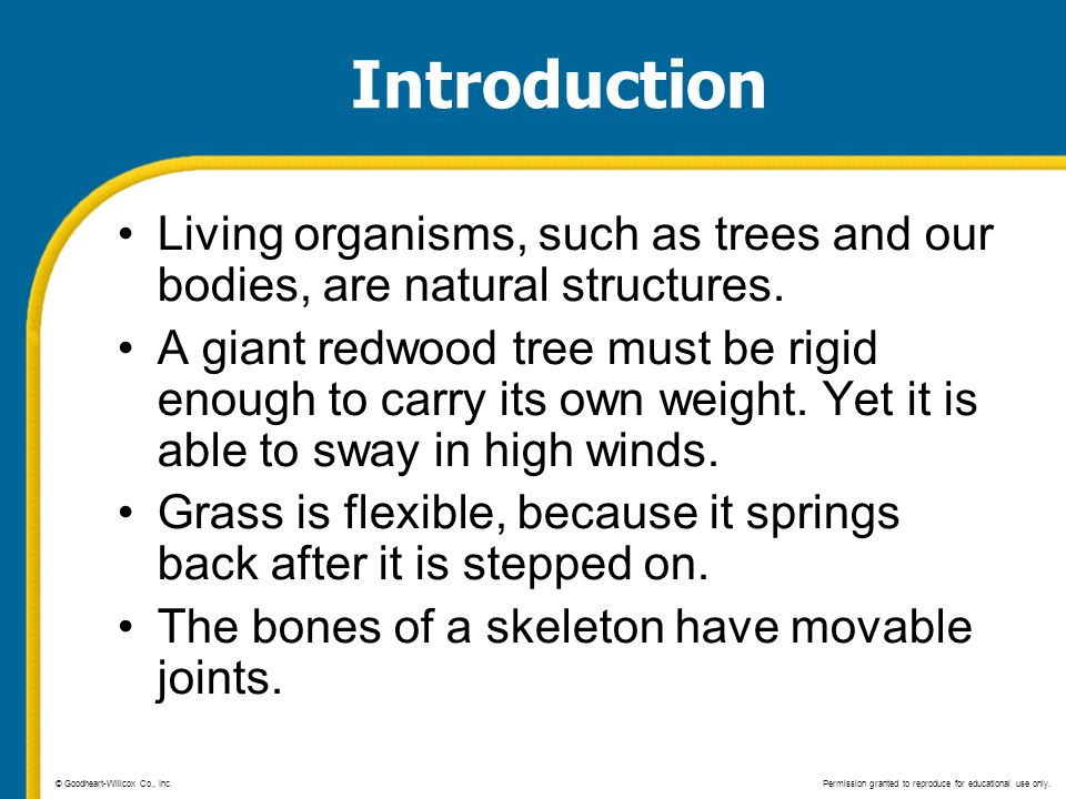 Introduction Living organisms, such as trees and our bodies, are natural structures. A giant redwood tree must be rigid enough to carry its own weight