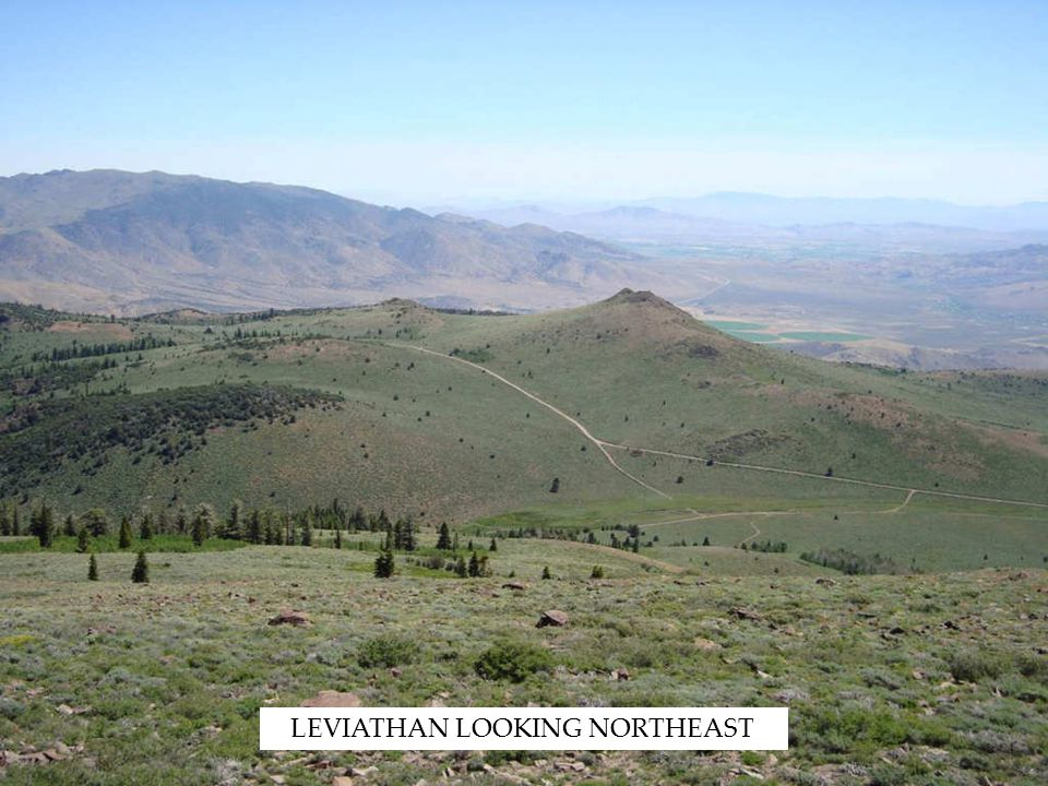 LEVIATHAN LOOKING NORTHEAST
