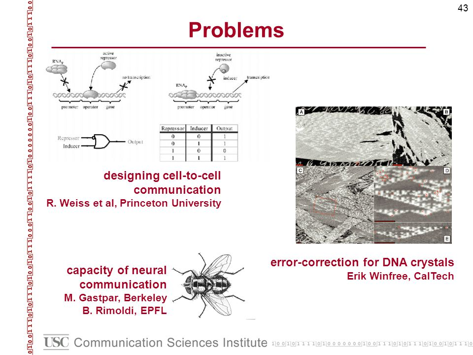 43 Problems designing cell-to-cell communication R. Weiss et al, Princeton University capacity of neural communication M. Gastpar, Berkeley B. Rimoldi