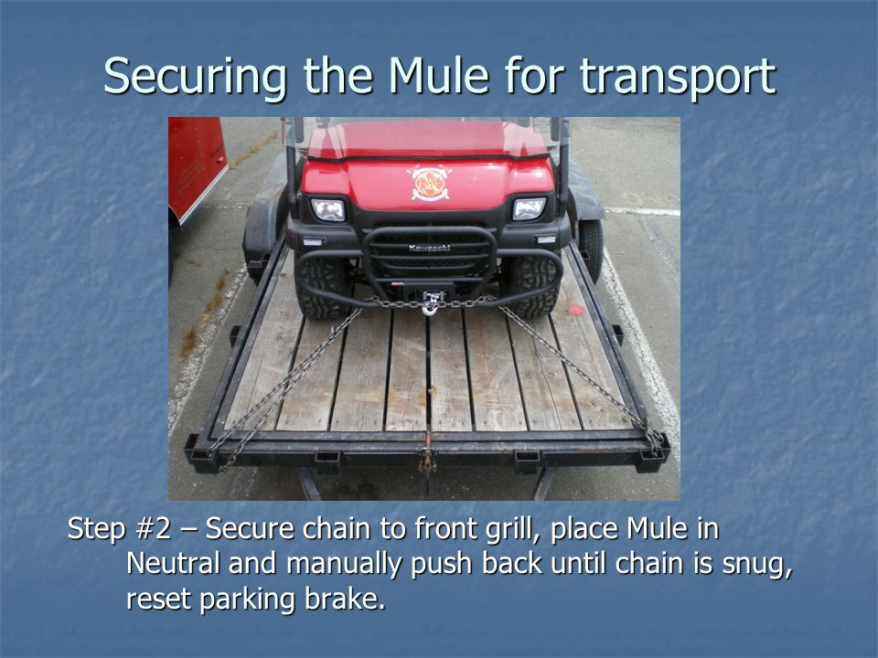 Securing the Mule for transport Step #2 – Secure chain to front grill, place Mule in Neutral and manually push back until chain is snug, reset parking