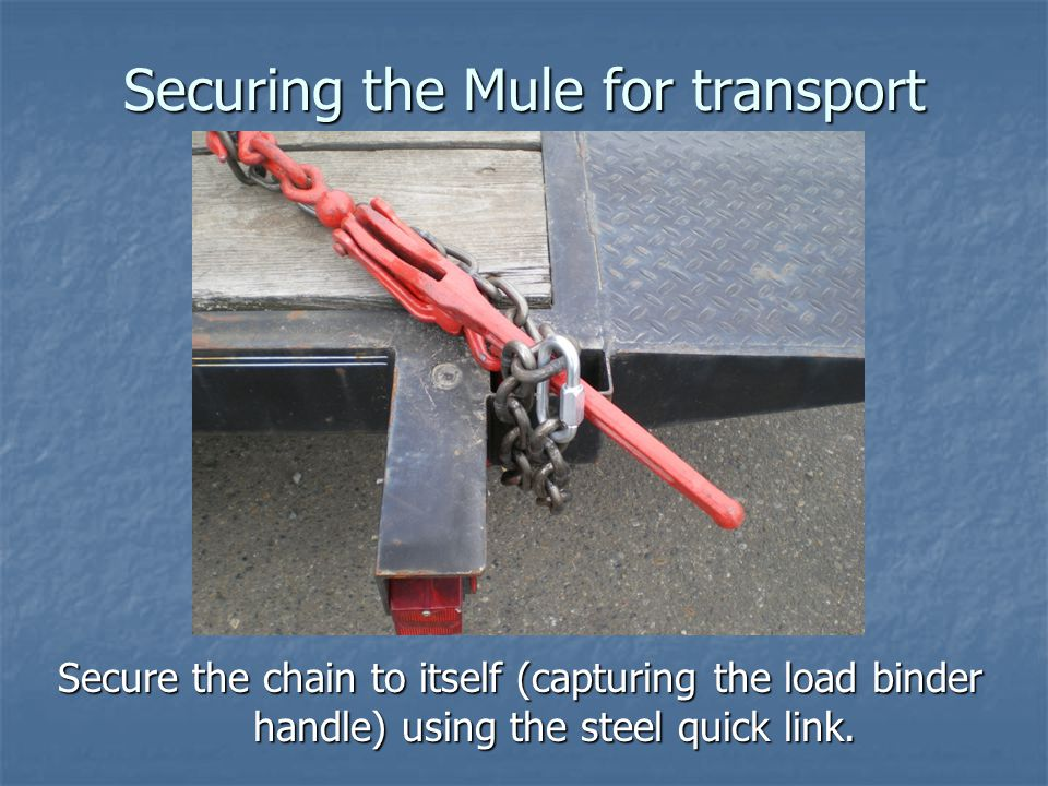 Securing the Mule for transport Secure the chain to itself (capturing the load binder handle) using the steel quick link.