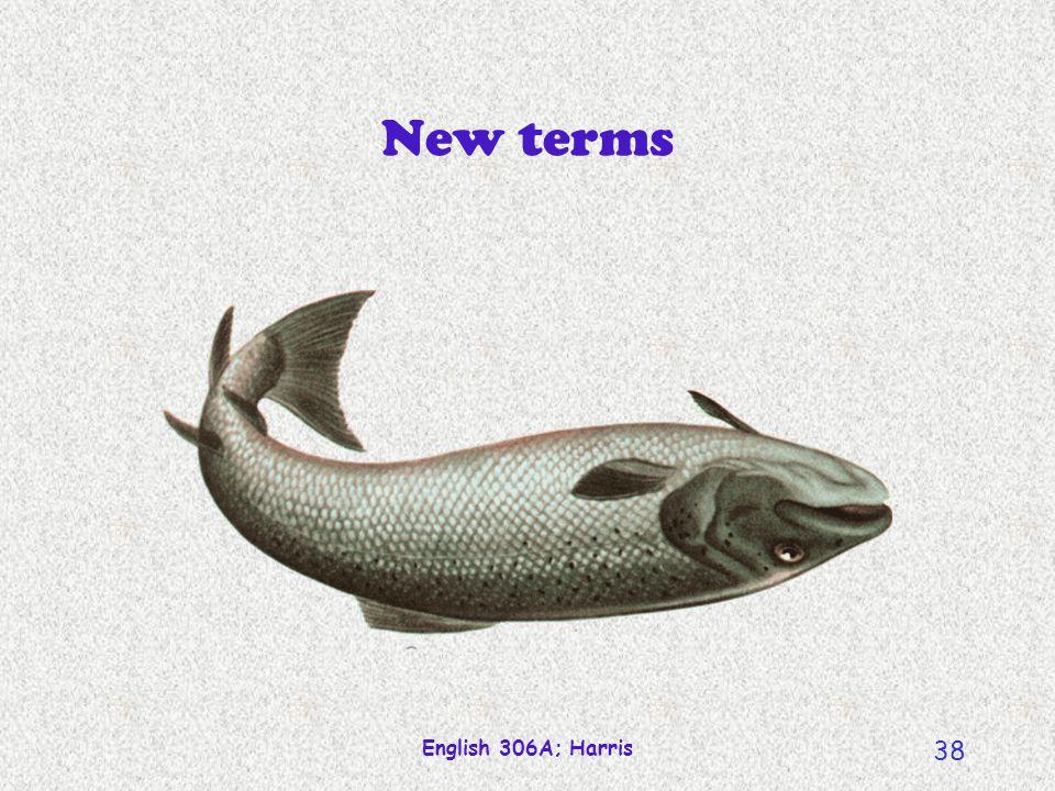 English 306A; Harris 37 A radial network The polysemy of school school of optometry cubist school school begins at 8:40 school of fish the whole schoo