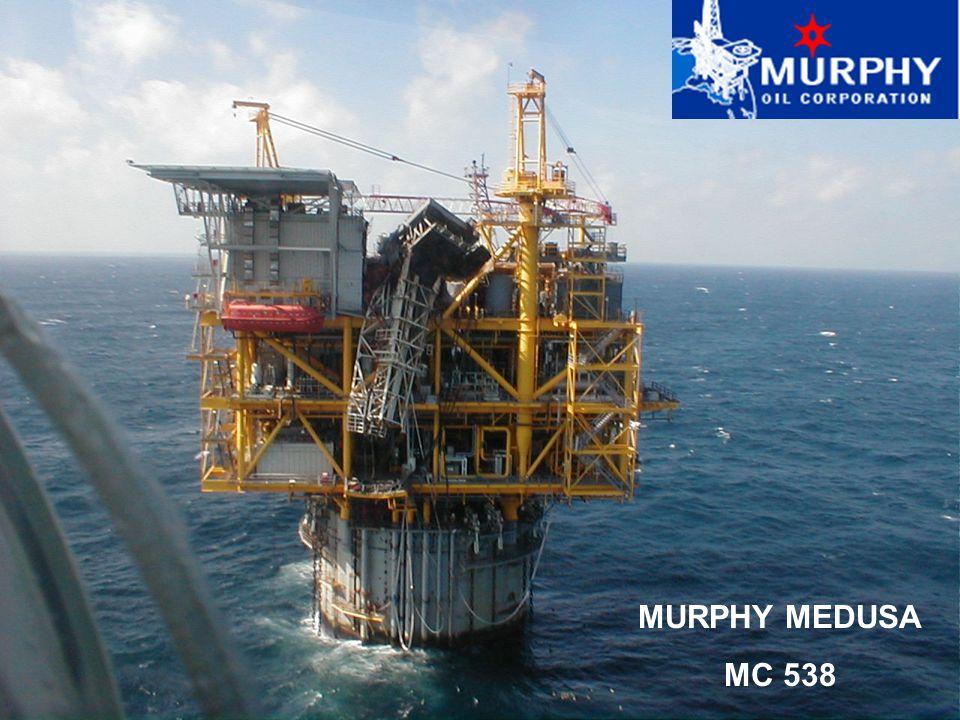 MURPHY MEDUSA MC 538