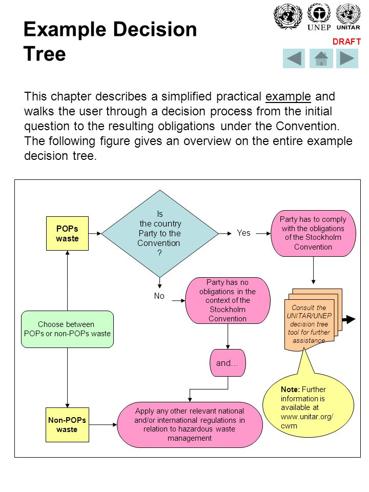 DRAFT Example Decision Tree This chapter describes a simplified practical example and walks the user through a decision process from the initial question to the resulting obligations under the Convention.