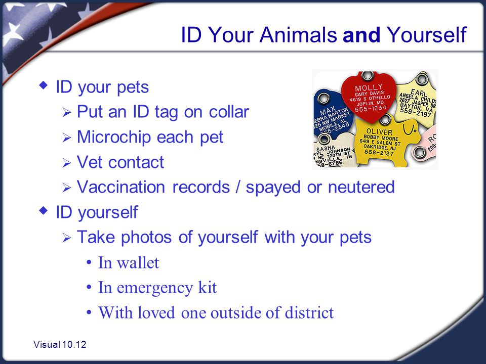 Visual 10.12 ID Your Animals and Yourself ID your pets Put an ID tag on collar Microchip each pet Vet contact Vaccination records / spayed or neutered ID yourself Take photos of yourself with your pets In wallet In emergency kit With loved one outside of district