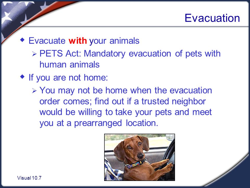 Visual 10.7 Evacuation Evacuate with your animals PETS Act: Mandatory evacuation of pets with human animals If you are not home: You may not be home when the evacuation order comes; find out if a trusted neighbor would be willing to take your pets and meet you at a prearranged location.