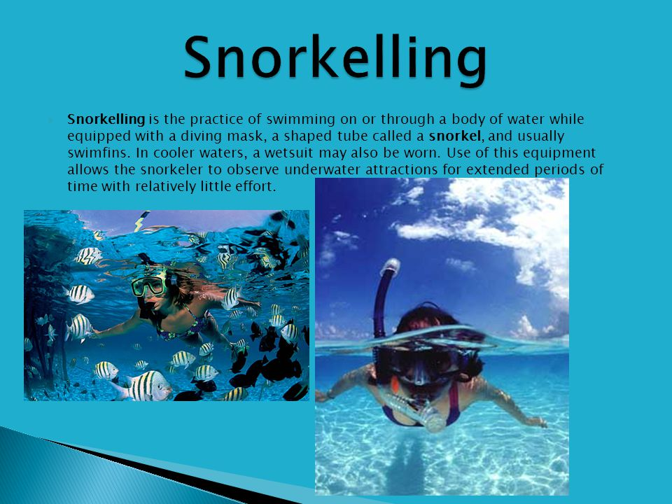 Snorkelling is the practice of swimming on or through a body of water while equipped with a diving mask, a shaped tube called a snorkel, and usually swimfins.
