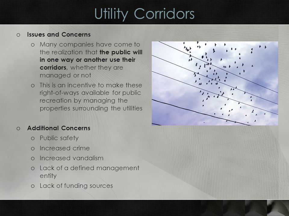 Utility Corridors o Issues and Concerns oMany companies have come to the realization that the public will in one way or another use their corridors, whether they are managed or not oThis is an incentive to make these right-of-ways available for public recreation by managing the properties surrounding the utilities o Additional Concerns oPublic safety oIncreased crime oIncreased vandalism oLack of a defined management entity oLack of funding sources