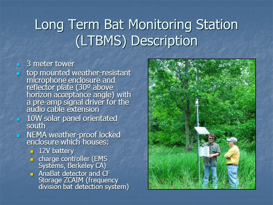 Long Term Bat Monitoring Station (LTBMS) Description 3 meter tower 3 meter tower top mounted weather-resistant microphone enclosure and reflector plate (30º above horizon acceptance angle) with a pre-amp signal driver for the audio cable extension top mounted weather-resistant microphone enclosure and reflector plate (30º above horizon acceptance angle) with a pre-amp signal driver for the audio cable extension 10W solar panel orientated south 10W solar panel orientated south NEMA weather-proof locked enclosure which houses: NEMA weather-proof locked enclosure which houses: 12V battery 12V battery charge controller (EMS Systems, Berkeley CA) charge controller (EMS Systems, Berkeley CA) AnaBat detector and CF Storage ZCAIM (frequency division bat detection system) AnaBat detector and CF Storage ZCAIM (frequency division bat detection system)