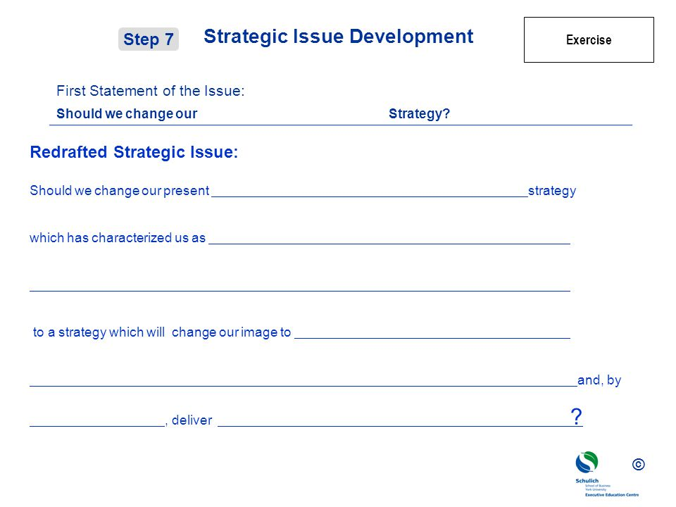 © Strategic Issue Development First Statement of the Issue: Should we change our Strategy.