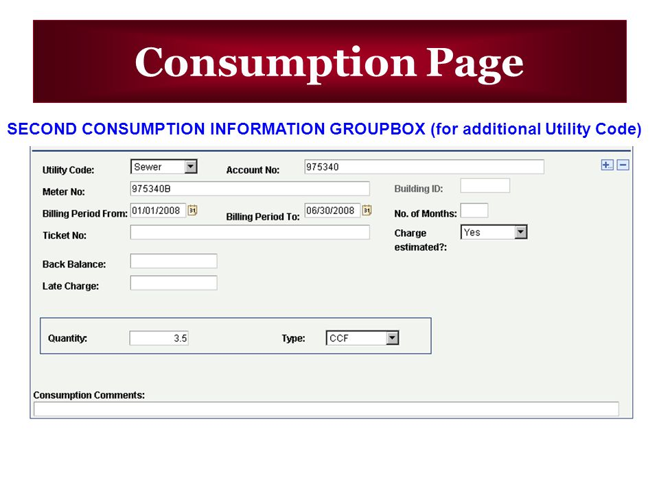 Consumption Page SECOND CONSUMPTION INFORMATION GROUPBOX (for additional Utility Code)