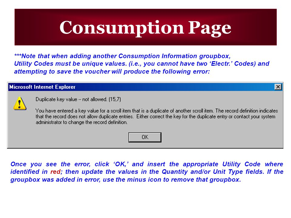 Consumption Page ***Note that when adding another Consumption Information groupbox, Utility Codes must be unique values.