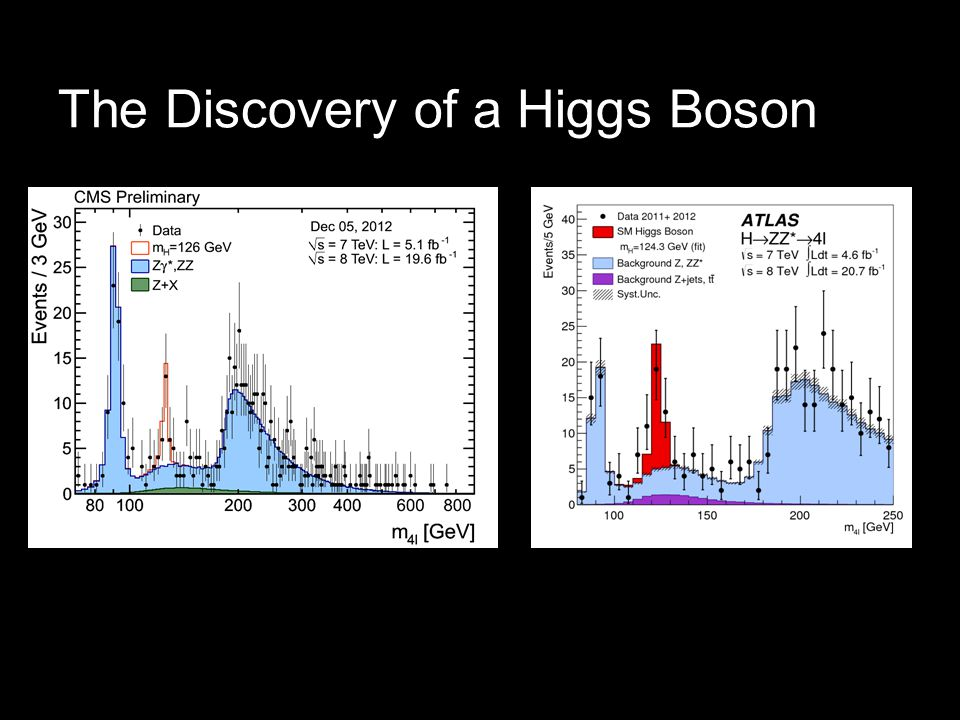 The Discovery of a Higgs Boson