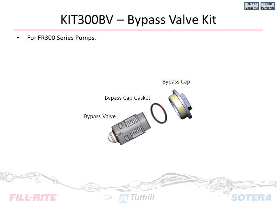 KIT300BV – Bypass Valve Kit For FR300 Series Pumps. Table of Contents FR300 Pump Kits Bypass Valve Bypass Cap Gasket Bypass Cap