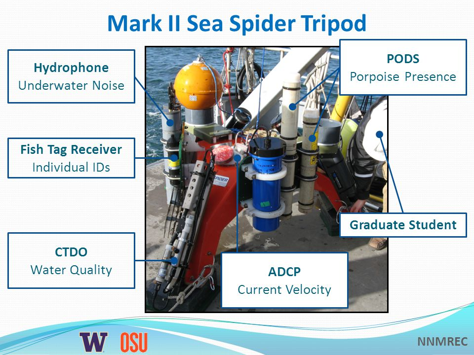 NNMREC Mark II Sea Spider Tripod CTDO Water Quality Hydrophone Underwater Noise Fish Tag Receiver Individual IDs ADCP Current Velocity PODS Porpoise Presence Graduate Student
