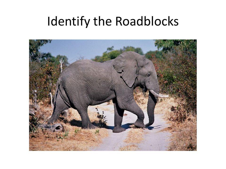 Identify the Roadblocks