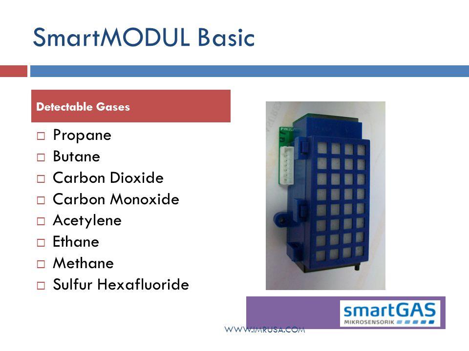SmartMODUL Connect 12 - 30 V DC Analog interfaces (4-20 mA, 0-1 V resp.